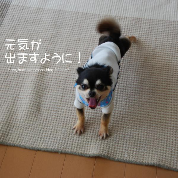 201604_00_101.jpg