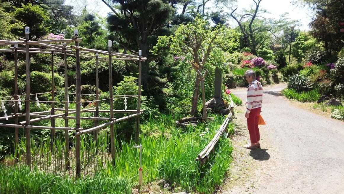 160505葭之池温泉 (5)
