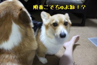 10IMG_0285.jpg