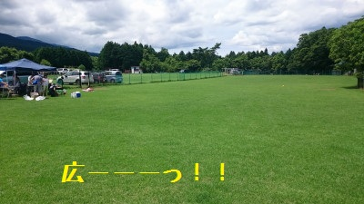 11DSC_0135.jpg