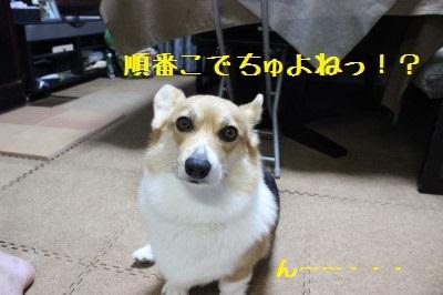 12IMG_0294.jpg