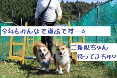 12IMG_3349.jpg