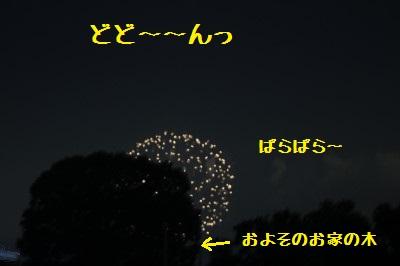 1IMG_0271.jpg