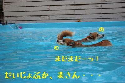 24IMG_1449.jpg
