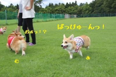 24IMG_9598.jpg