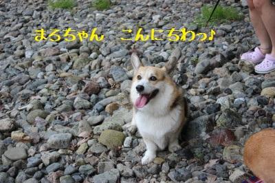 2IMG_0060.jpg