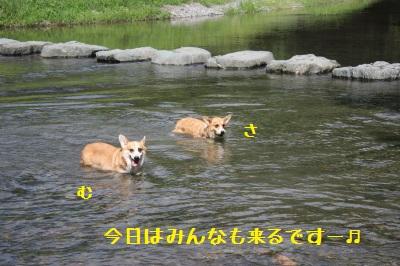 2IMG_0830.jpg