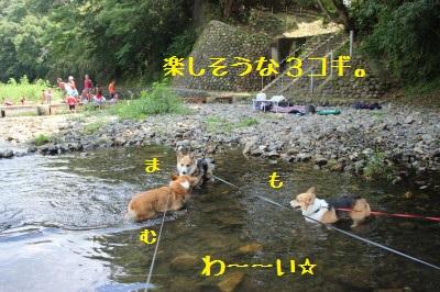 3IMG_0132.jpg