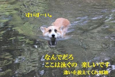 4IMG_0097.jpg