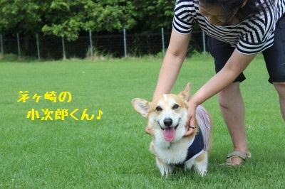4IMG_9604.jpg