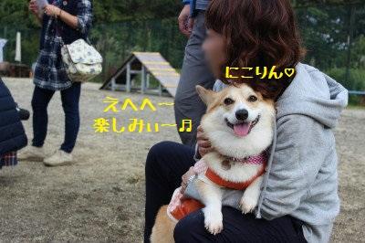 5IMG_0292.jpg