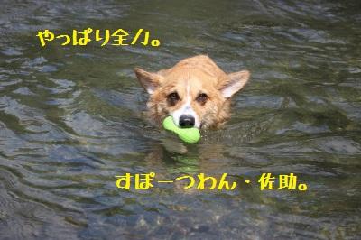 5IMG_0875.jpg