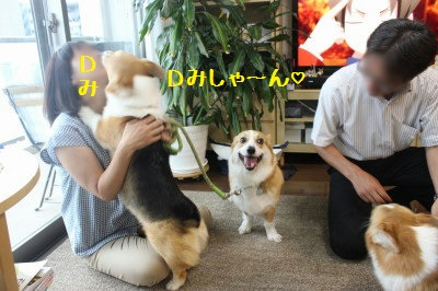 7IMG_9302.jpg