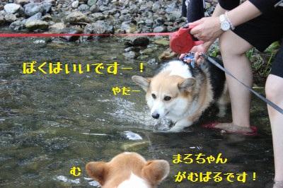 8IMG_0137.jpg