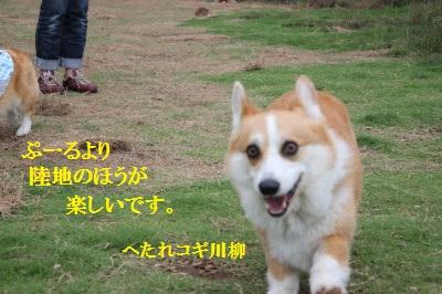 8IMG_9943.jpg