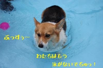 9IMG_1477.jpg