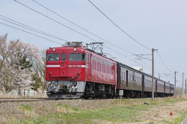 160409gohyakugawa-hiwada-ka.jpg