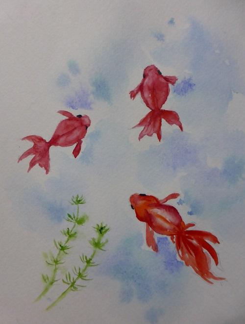 金魚 はがき絵