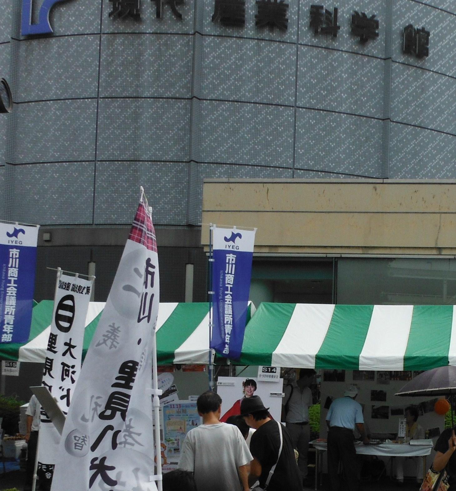 itikawa02.jpg