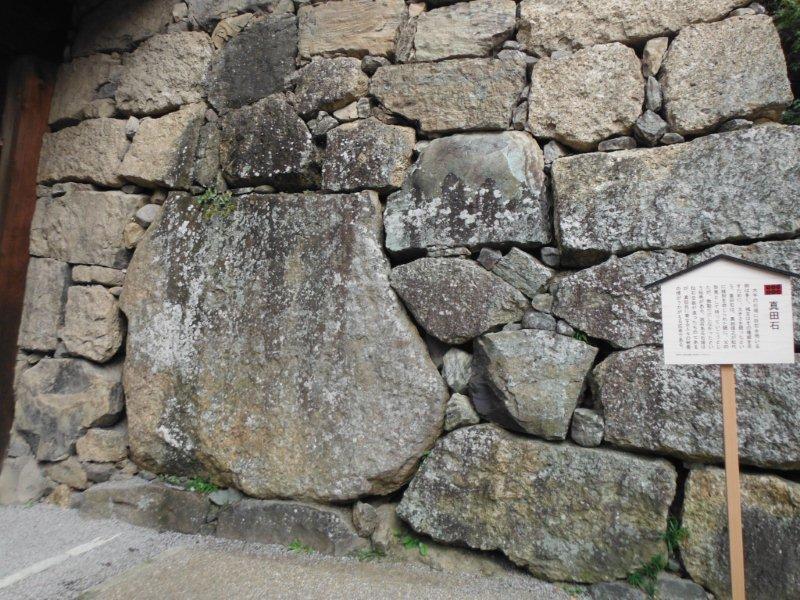 ueda-4.jpg