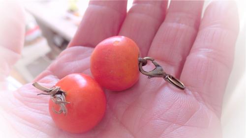 tomato160413-3
