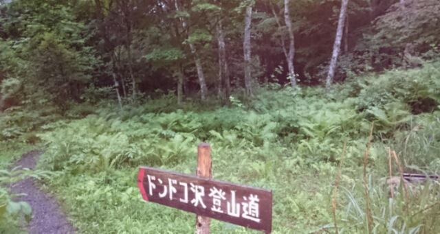 20160618180255ff0.jpg