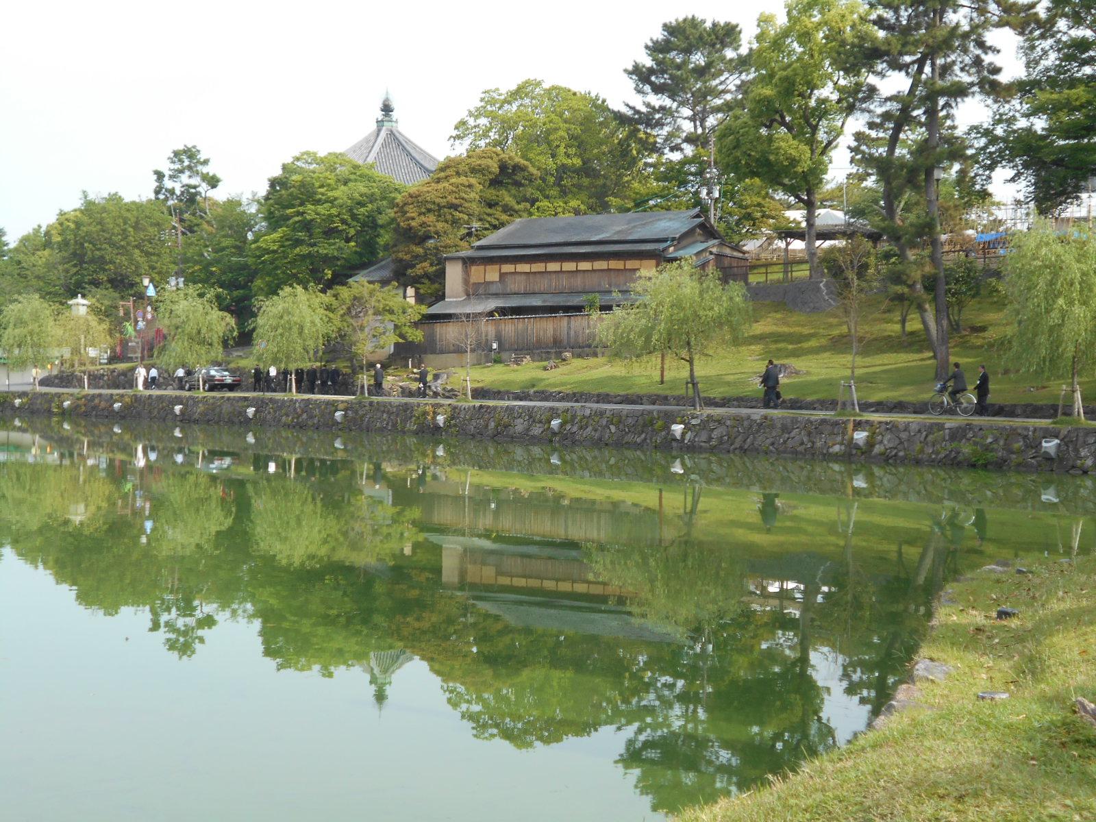猿沢の池②