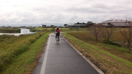 路面が濡れたままの宍道湖サイクリングロード