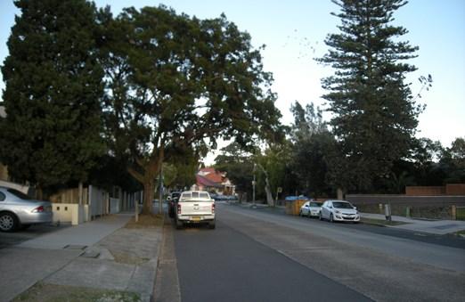 シドニー郊外の住宅街の中をゆく