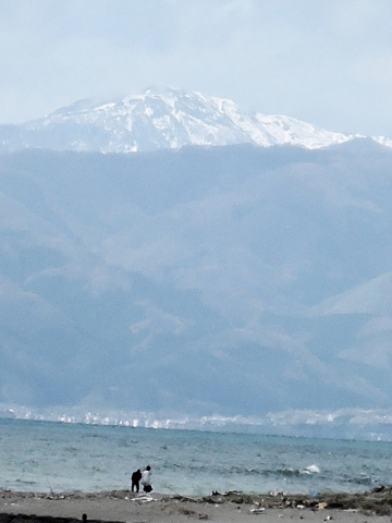 落合浜からの白神岳20160500000003