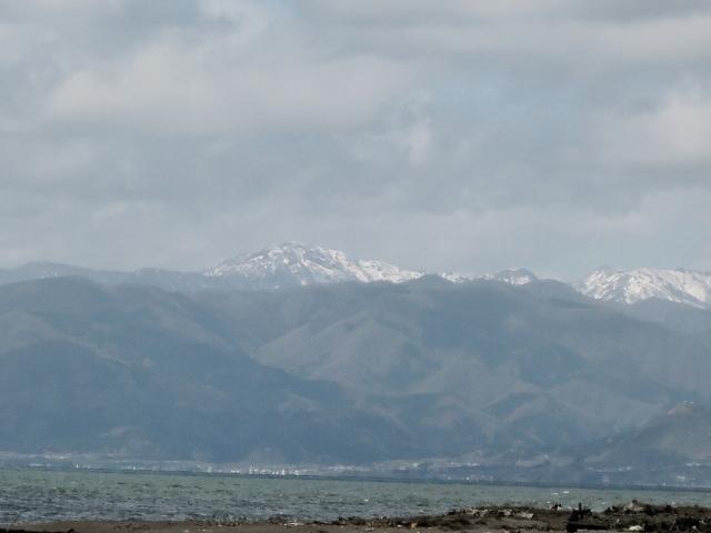 落合浜からの白神岳20160500000002