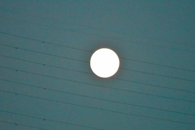 10月15日の月⑤.jpg