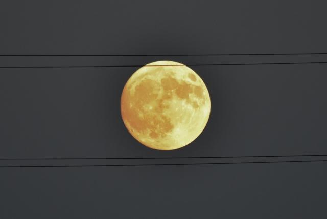 10月15日の月⑧.jpg