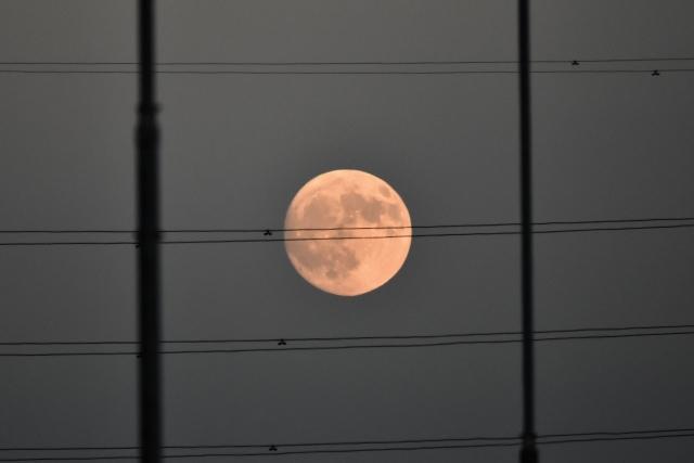 10月15日の月⑩.jpg