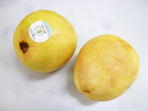 guava-01.jpg