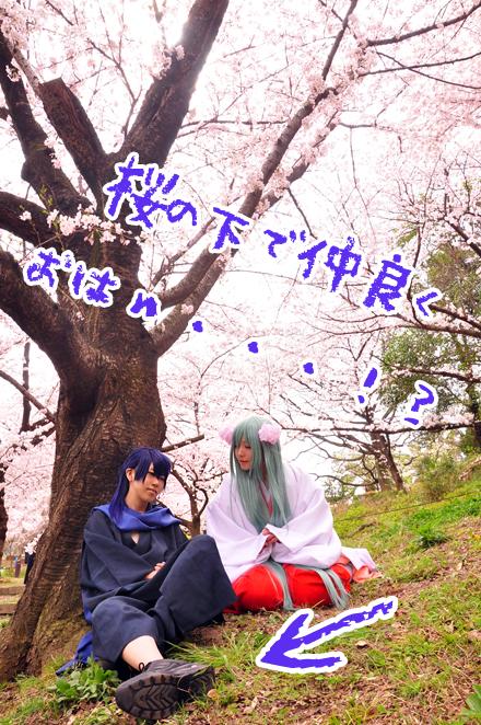 c91senbonzakura5.jpg