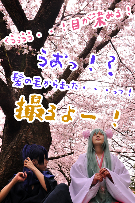 c91senbonzakura8.jpg
