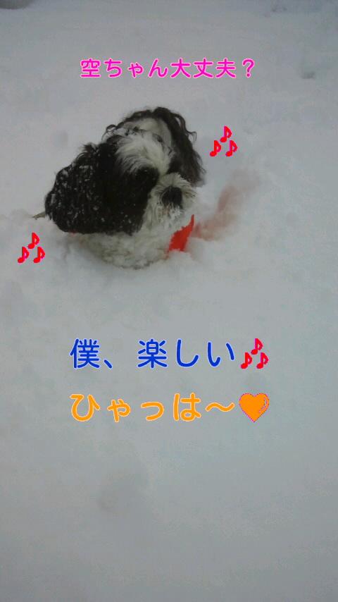 moblog_30670d32.jpg