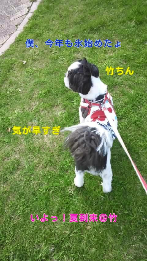 moblog_329f4d3d.jpg