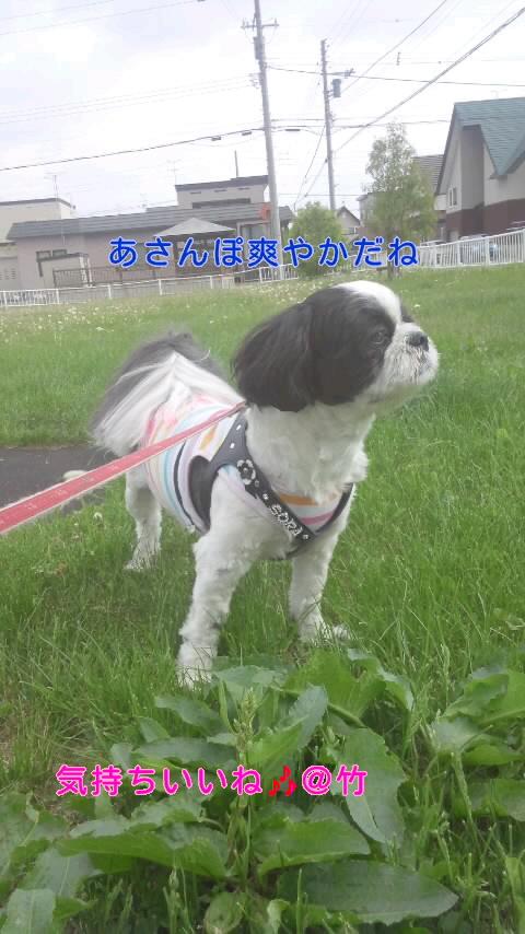 moblog_4083fae4.jpg
