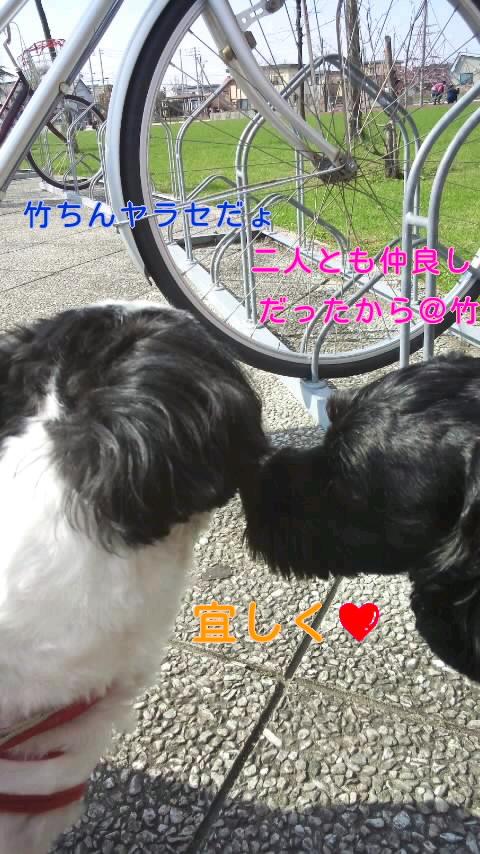 moblog_48cb28ed.jpg