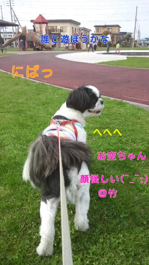 moblog_6882d635.jpg