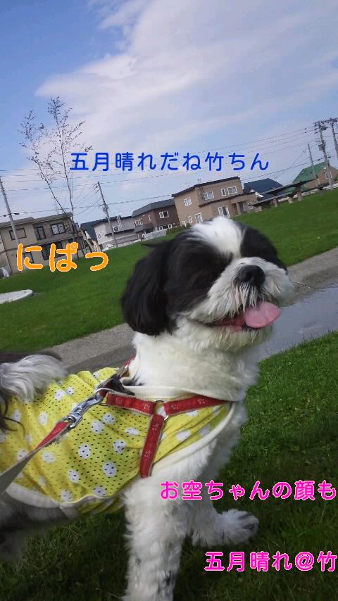 moblog_68abe480.jpg