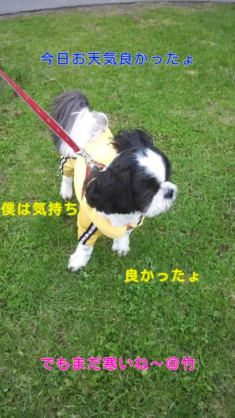 moblog_8e960192.jpg