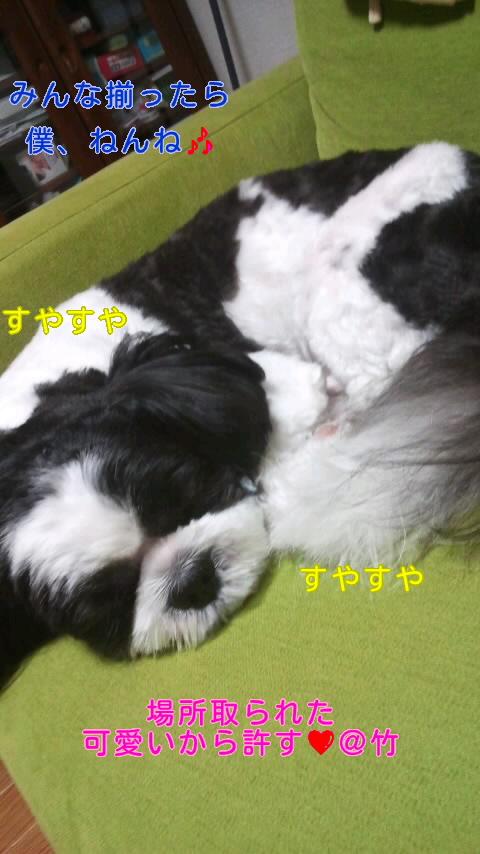 moblog_928a1c5e.jpg