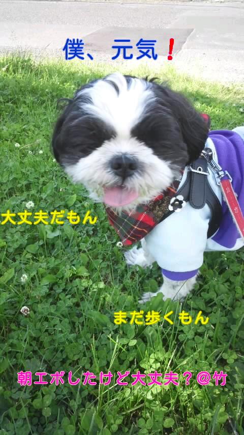 moblog_ae698455.jpg
