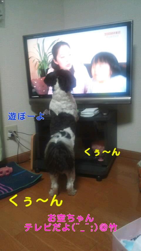moblog_c98e5f93.jpg