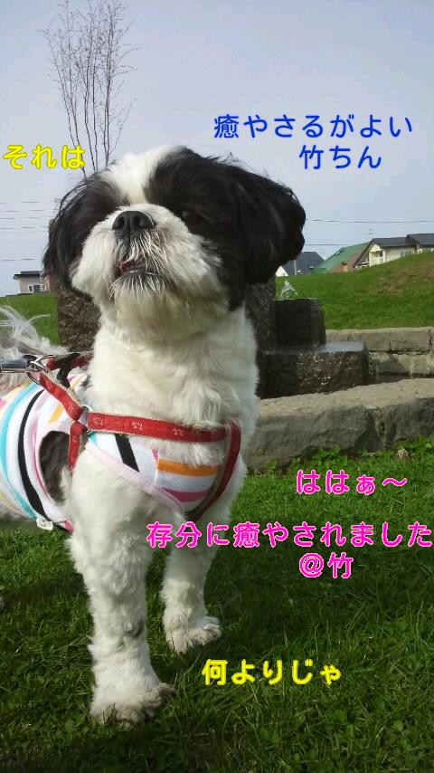 moblog_cdf47d4e.jpg