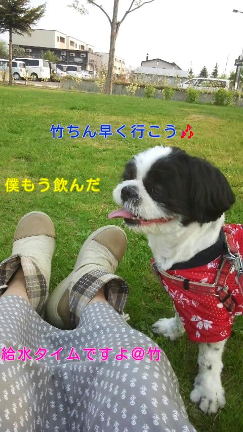 moblog_d89891f0.jpg