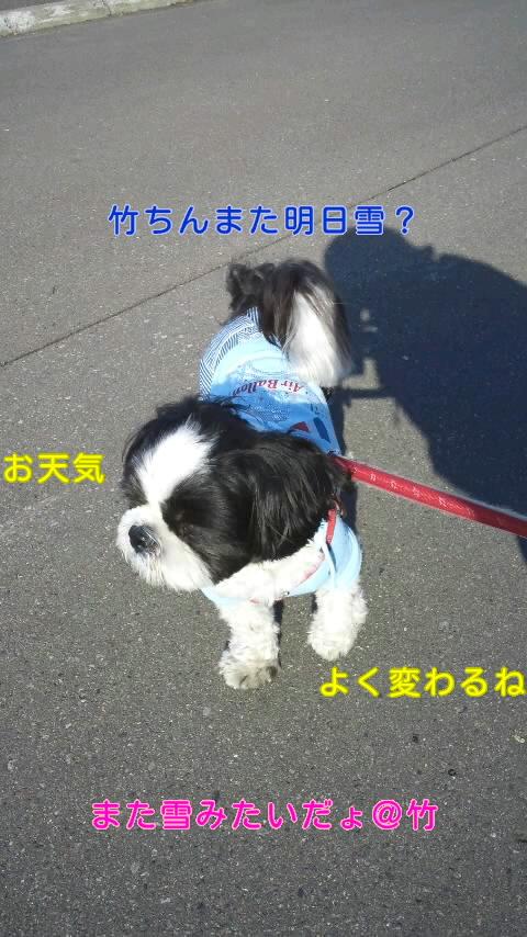 moblog_f2d35af3.jpg